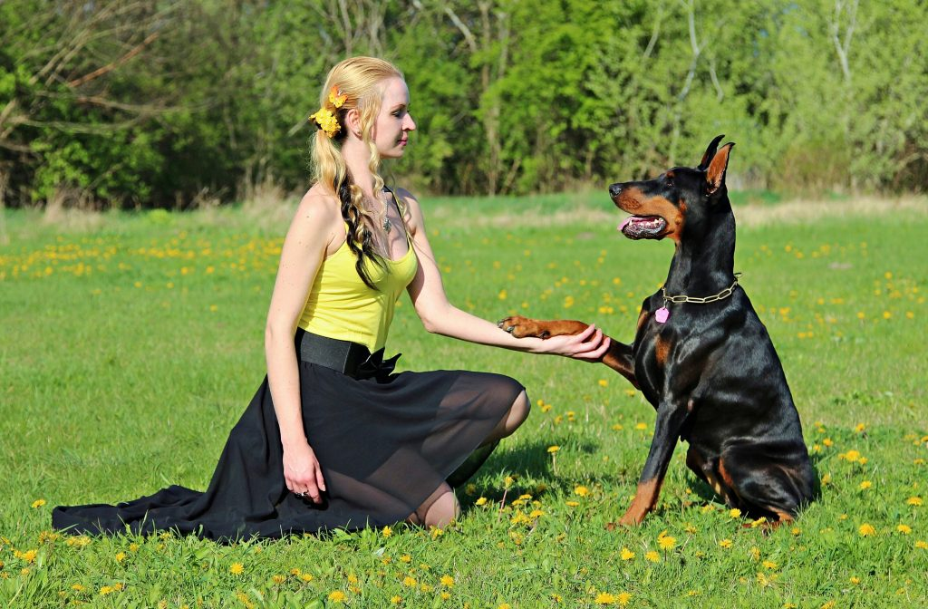Image of a woman training a dog
