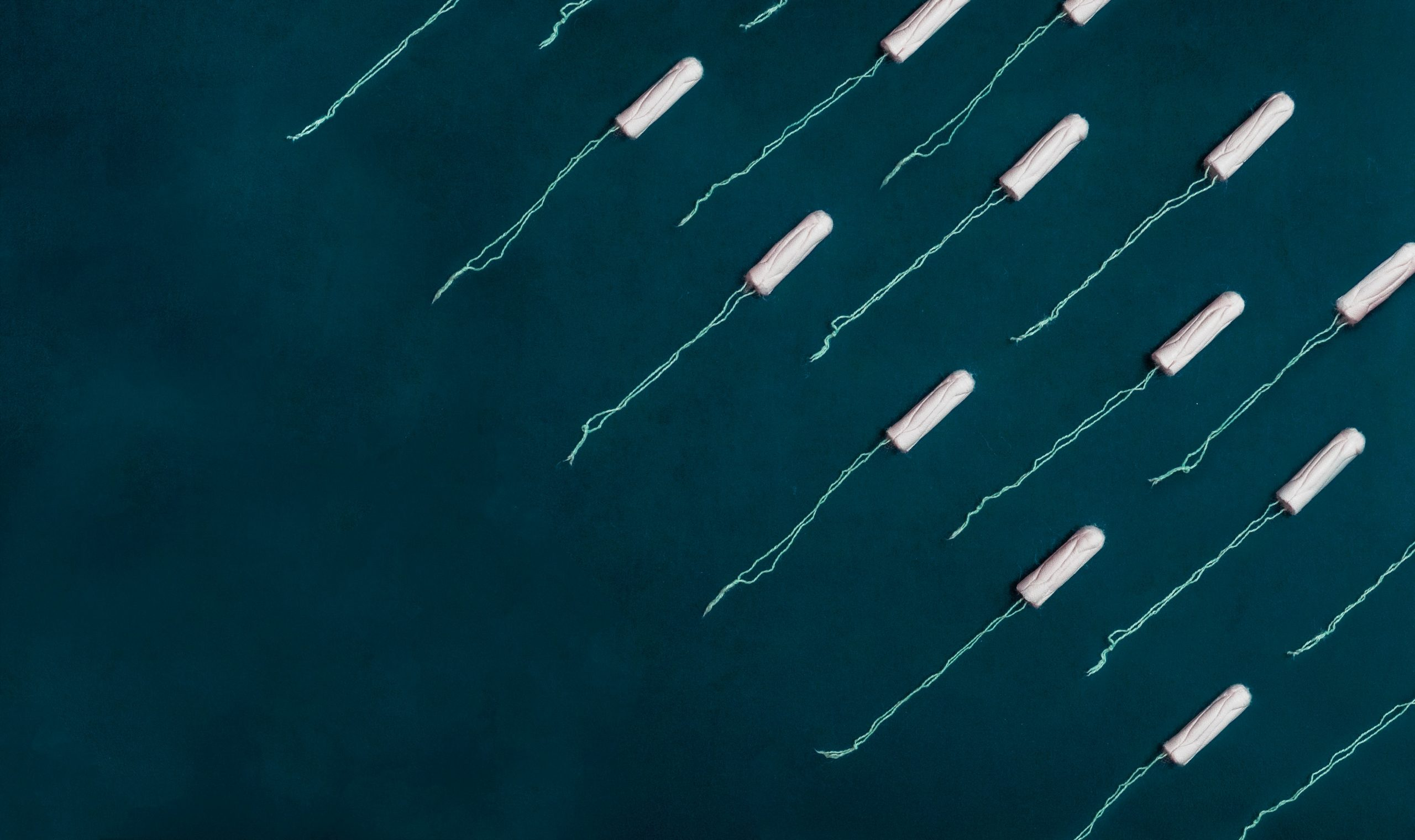 Imagem de vários absorventes internos sobre fundo azul