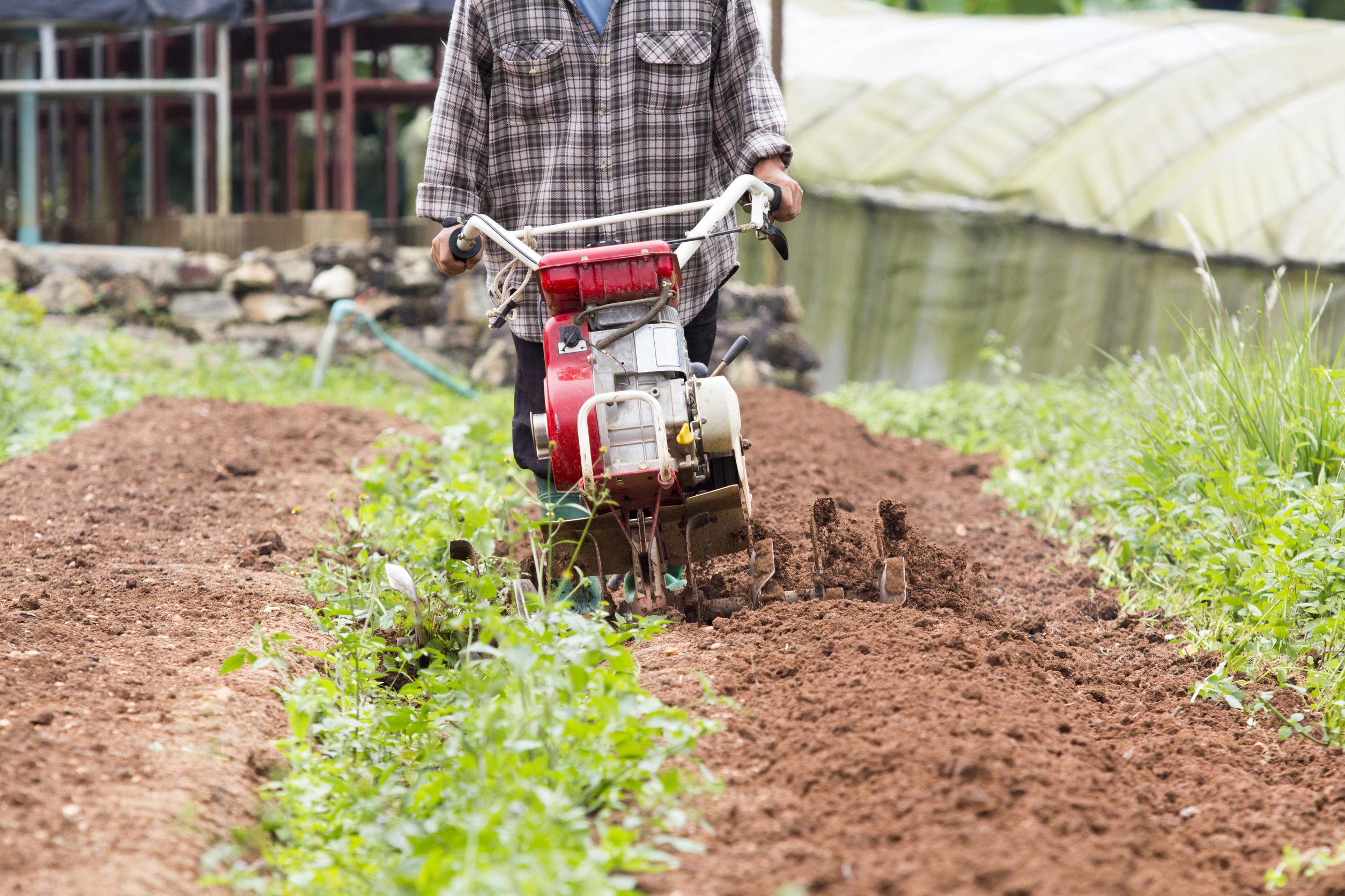 Imagem mostra um motocultivador em atividade em uma plantação.