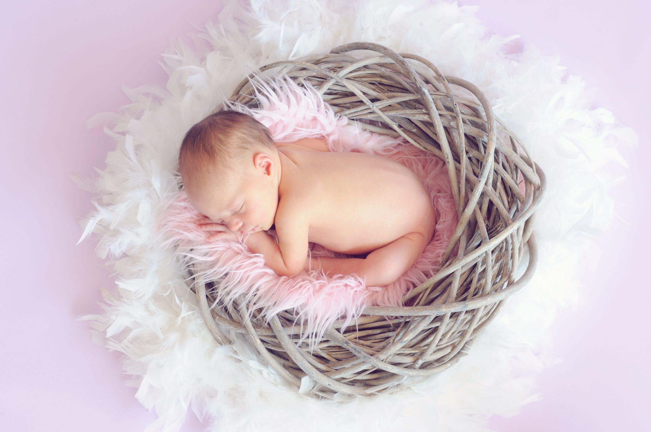 Imagem de um bebê numa cestinha.