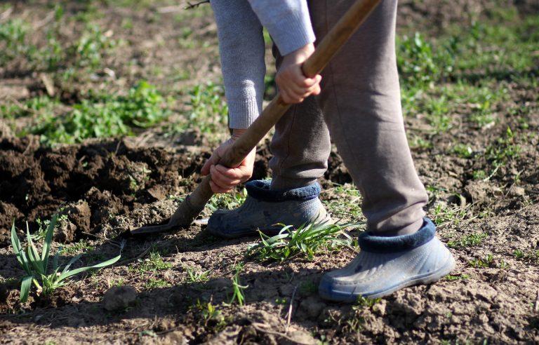 Pessoa cavando terra em jardim com uma pá