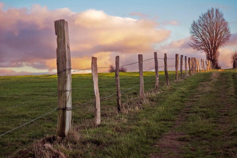 Imagem mostra uma paisagem com uma cerca de arame farpado ao centro.