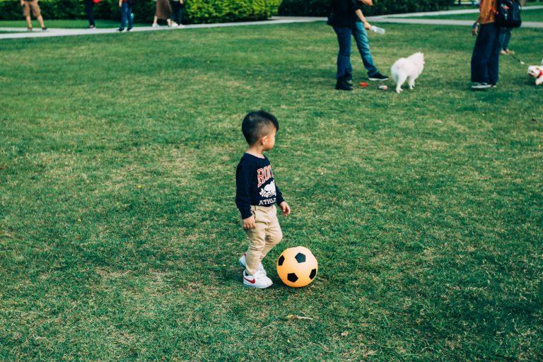 Imagem mostra uma criança bem pequena jogando bola na grama de um parque. Ao fundo, cachorros passeiam e brincam com seus donos.