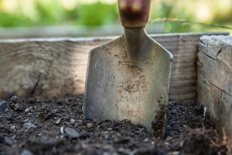 foto de uma pá de jardinagem meio enterrada no solo.