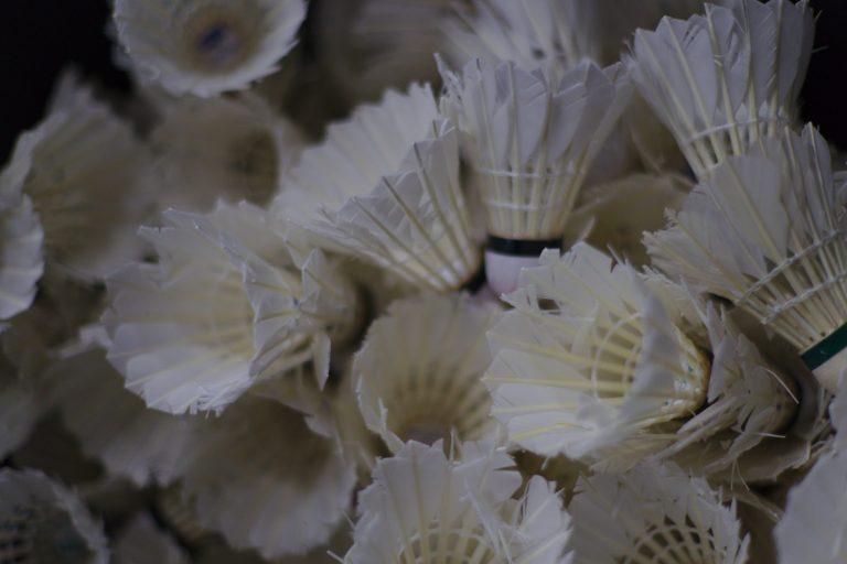 Imagem mostra, em plano detalhe, um amontoado de petecas de badminton, todas com suas penas voltadas para a câmera.