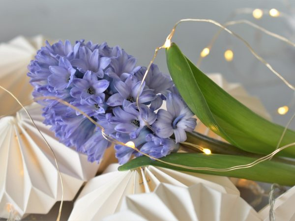 Imagem de cordão de luz de LED com enfeites brancos e arranjo de flor