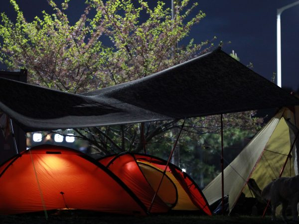 Imagem de gazebo dobrável, sendo usado em conjunto com cabanas de camping.