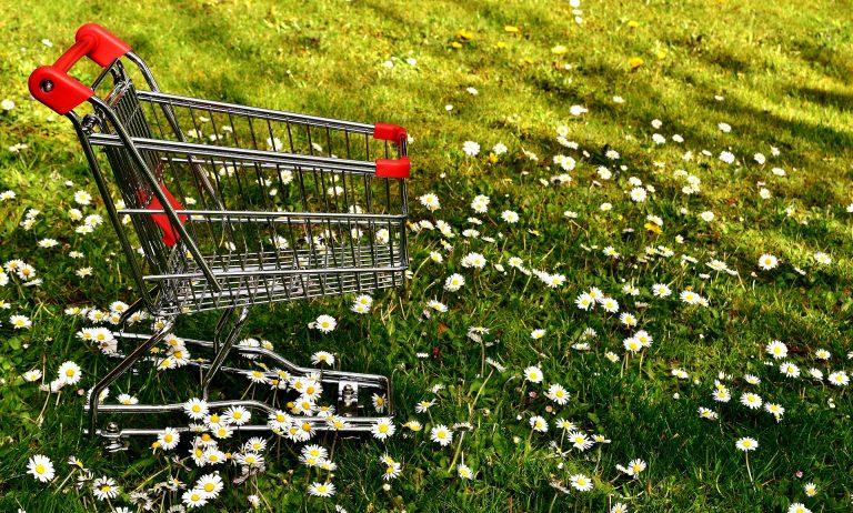 Imagem de carrinho de compras metálico com detalhes em vermelho em jardim com margaridas