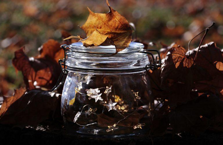 Imagem de cordão de luz dentro de pote de vidro com folhas secas ao fundo