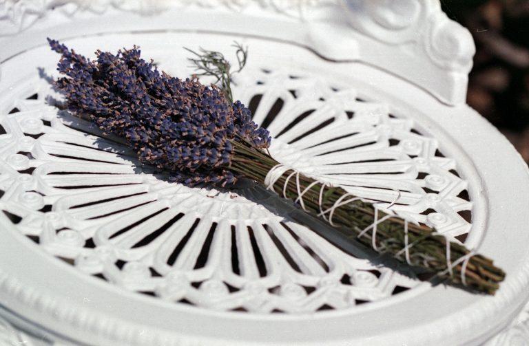 Imagem de ramo de lavanda sobre cadeira de metal branca