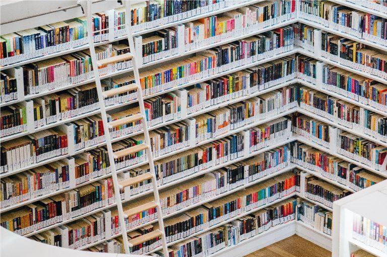 Imagem mostra uma escada de fibra em uma biblioteca.
