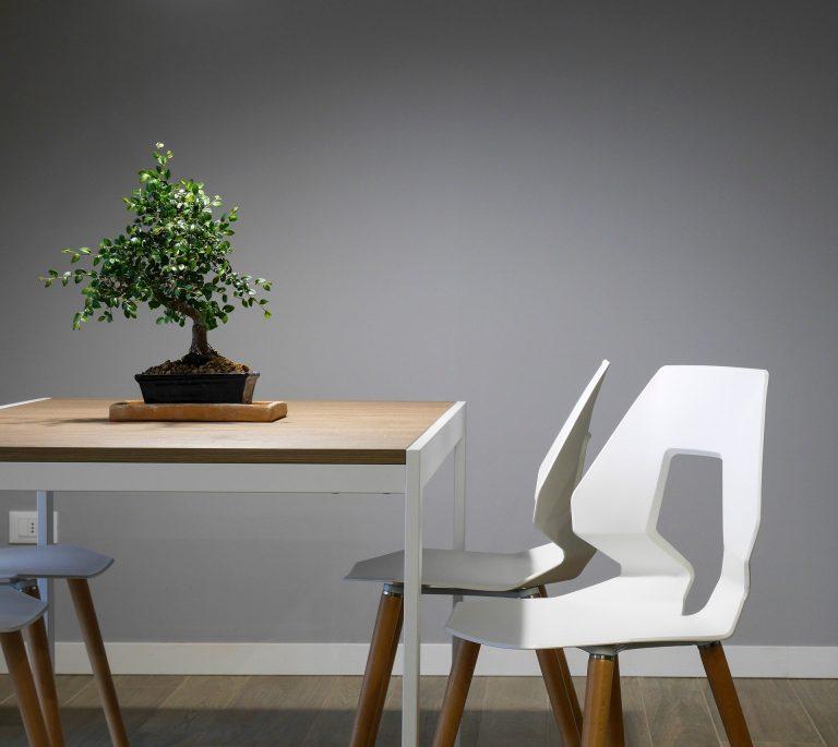 Imagem de cadeira de plástico branca com pés de madeira com design inovador