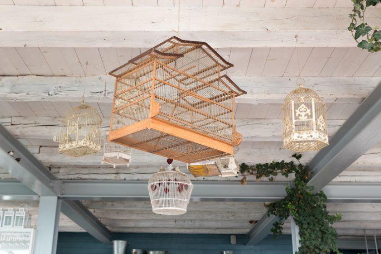 Imagem de gaiolas de diferentes matérias e formatos penduradas em teto de madeira