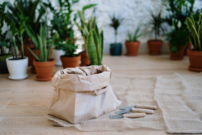 Imagem de um saco de ferramentas de jardinagem.