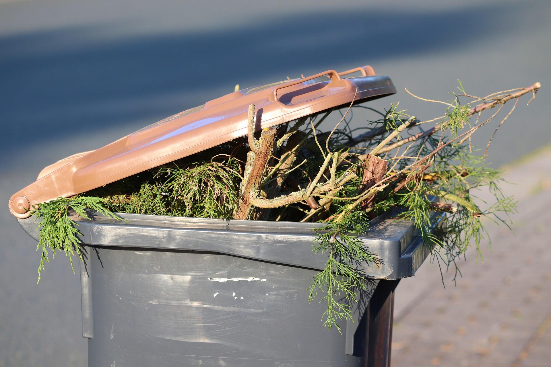 Lata de lixo cheia de galhos de árvores